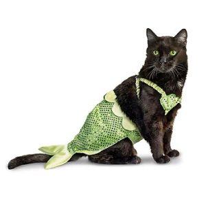 Meow-maid