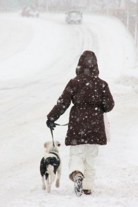 20100206054802_dog_walk_snow