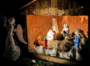 rs_560x415-131211090016-1024.3cats-in-manger-baby-jesus.ls.121113_copy