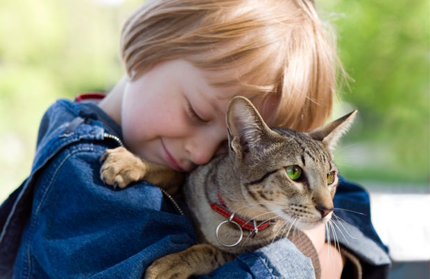 child_hugging_cat